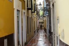 An Evening walk in Barrio Santa Cruz, Seville