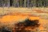 Ocher beds, Kootenay National Park, British Columbia