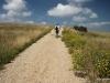 The initial gentle ascent through the prairies, Flatiron Vista Loop Trail