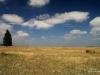 The prairies, viewed from Flatiron Vista Loop Trail