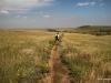 Flatiron Vista Loop Trail, through the prairies