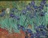 """Van Gogh's """"Irises"""""""