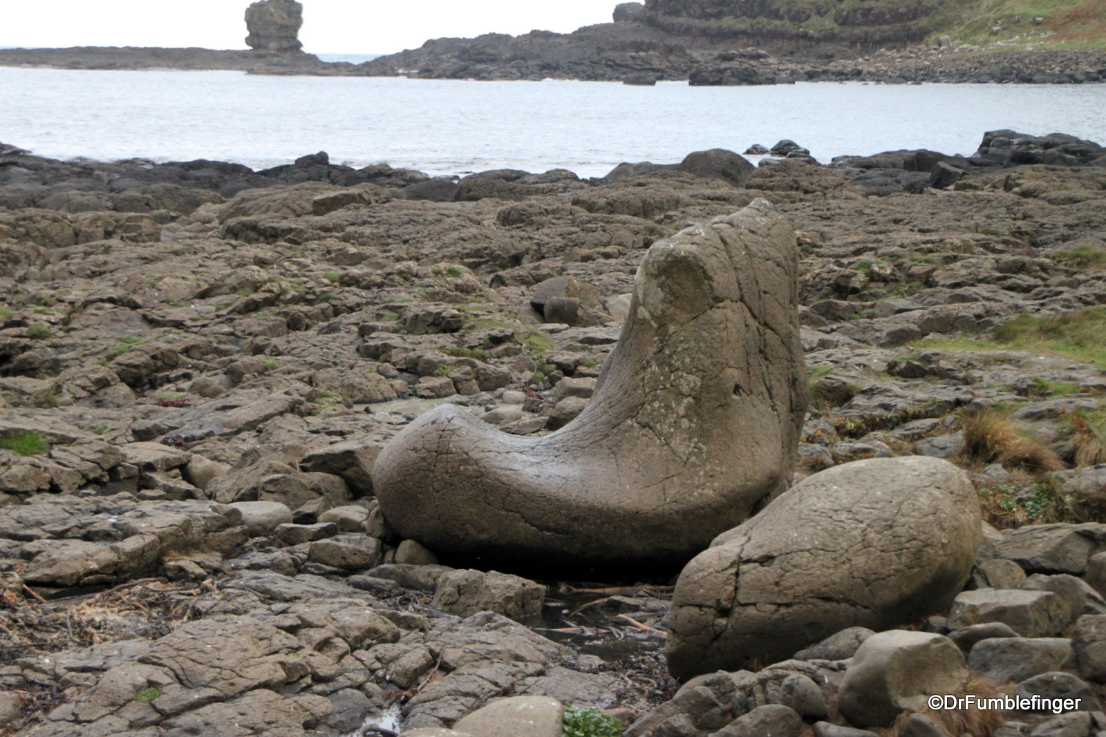 Giant's Shoe on the Giant's Causeway