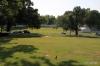 Back grounds of Graceland