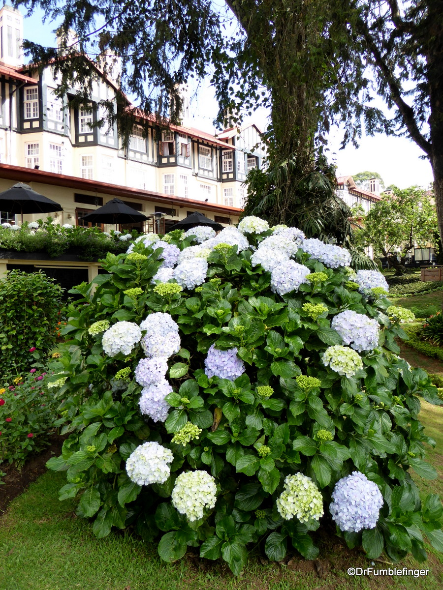 Gardens and the Front Entrance to the Grand Hotel, Nuwara Eliya