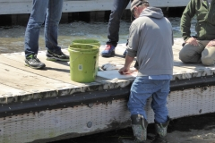 Grand Marais -- cleaning the fish