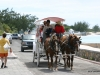 Horse-drawn carriage, Grand Turk