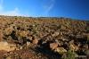 Road upmountain, Haleakala National Park