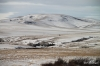 Porcupine Hills in winter, Southern Alberta