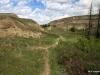 Path on the floor of Horseshoe Canyon
