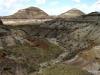 Scenery on the floor of Horseshoe Canyon