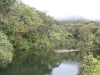 Horton Plains -- pond