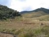 Horton Plains -- Trail