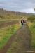 Trail by Oxara River, Thingvellir National Park