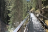 Elevated trail, Johnston Canyon