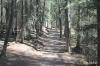Trail above Upper Falls, Johnston Canyon