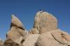 Joshua Tree N.P. -- Rock climbers