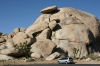 Joshua Tree N.P. -- Balanced Rock