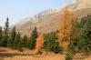 kananaskis-country-2012-010