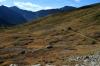 Alpine meadow, Ptarmigan Cirque, Highwood pass.