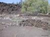 Ruins, King's Trail @ Waikoloa
