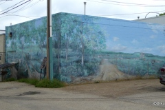 Murals-of-LaCombe-21