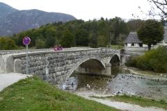 Jezernica River, outflow of Lake Bohinj, Slovenia