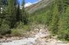 Louise Creek