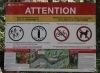 Bear restriction signage, Lake Minnewanka