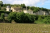 Vineyards, Loire Valley