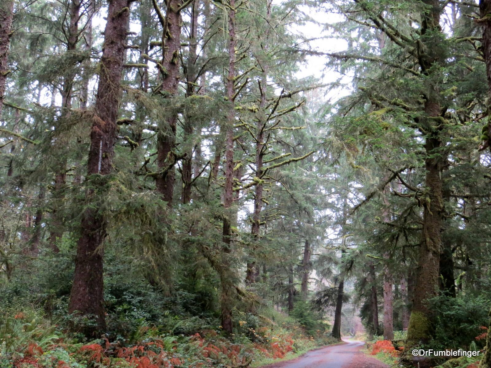 Leadbetter State Park