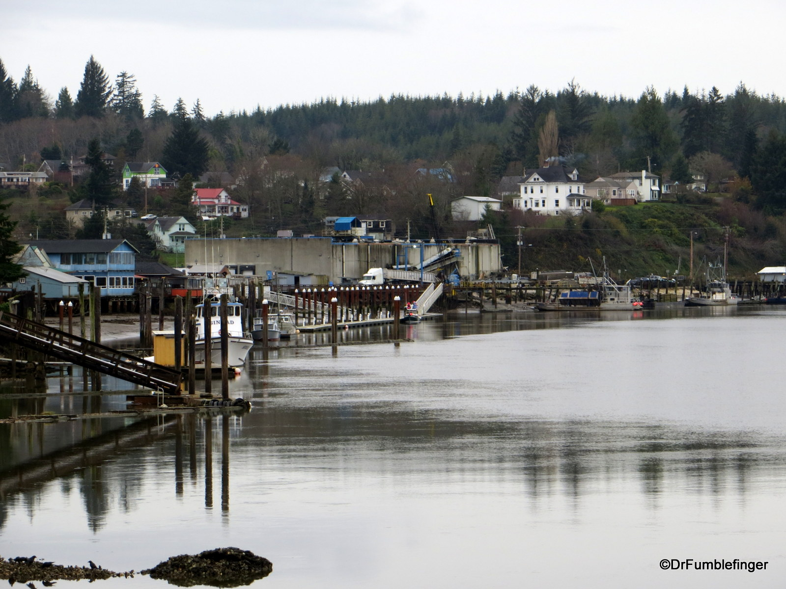 Small town on Willapa River