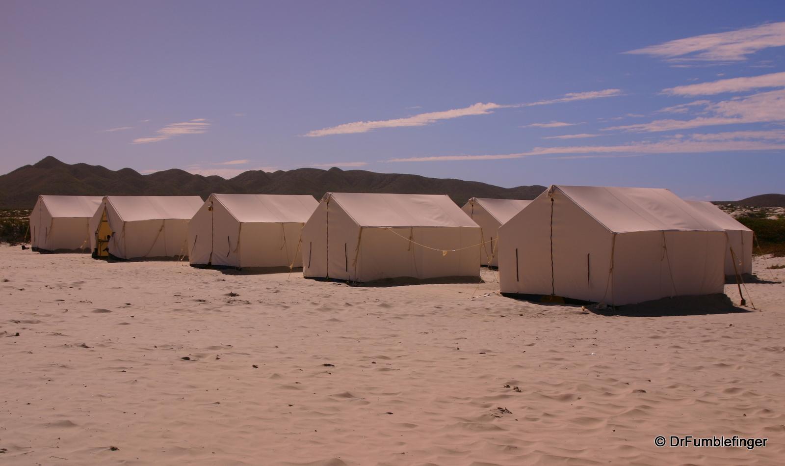 Sleeping tents, Magdalena Bay