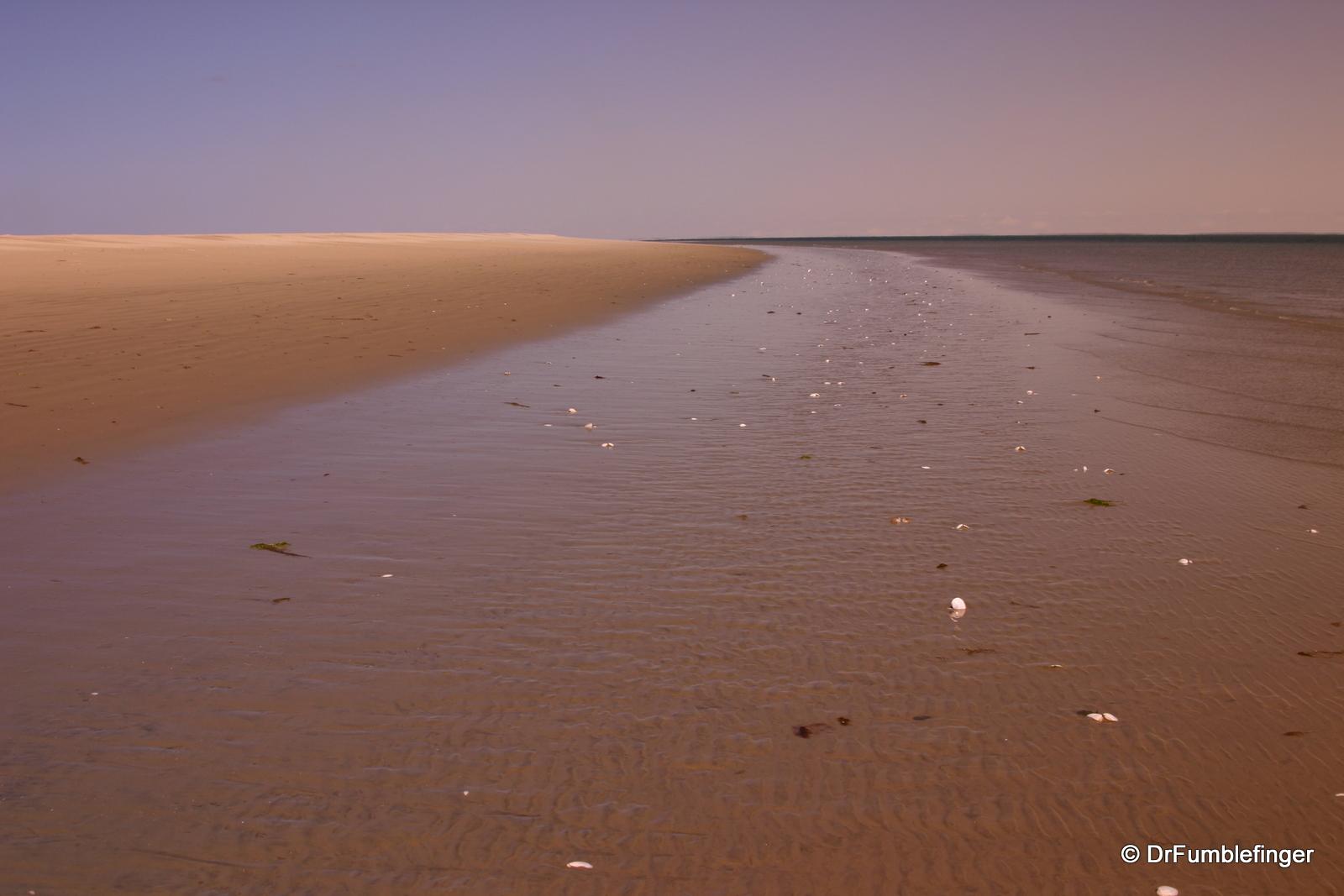 Beach at Magdalena Bay