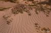 Rippling sand, Magdalena Bay