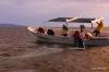 Gray whale and calf, Magdalena Bay