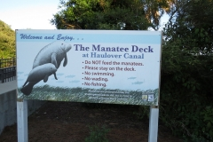 Manatee Deck at Haulover Bridge