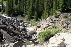 Trail to Moraine Lake, Banff NP