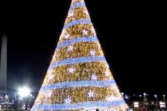 National Christmas Tree, Washington DC
