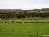 Boyne Valley viewed from Newgrange