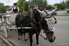 Horse carriage, Niagara-on-the-Lake, Ontario