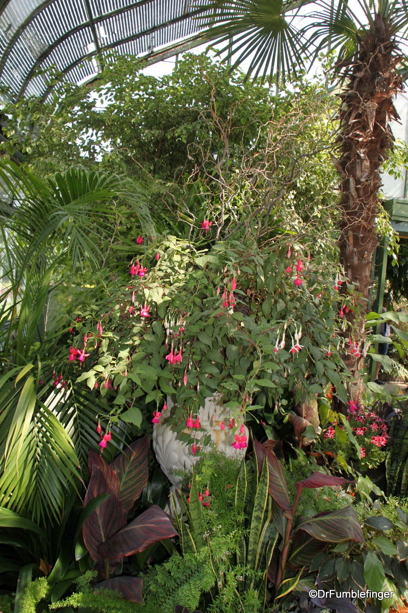 Niagara Parks Floral Showcase