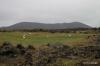 Sheep & Volcanic crater, Myvatn area
