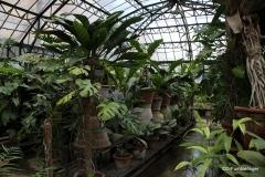 Greenhouses, Orto Botanico, Palermo