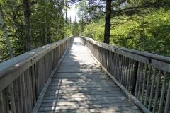 Boardwalk trail in Ouimet Canyon