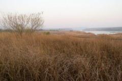 Panna Tiger Reserve
