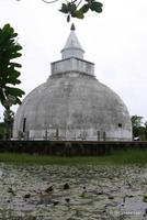 Old Stupa, Sri Lanka