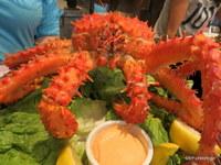 Patagonian King Crab