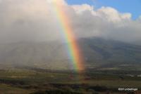 Rainbow, West Maui