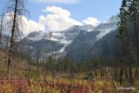 Stanley Glacier, B. C.